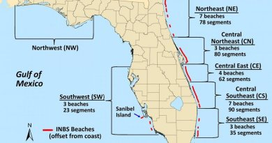 The 368 one-kilometer sections of Florida beach studied by researchers are shown in red. Credit: University of Central Florida