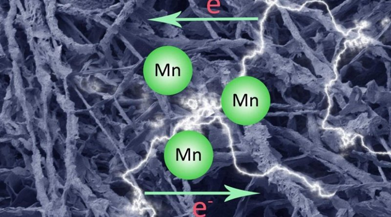 This is an artistic rendering of a carbonized fungal biomass-manganese oxide mineral composite (MycMnOx/C) can be applied as a novel electrochemical material in energy storage devices Credit Qianwei Li and Geoffrey Michael Gadd