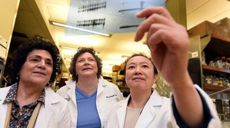 Dr. Nahid Mivechi, cell biologist and radiobiologist, a group leader at the Cancer Center and a study co-author; Dr. Nita Maihle, MCG cancer biologist, associate center director for education at the university's Cancer Center and a study co-author; Dr. Lan Ko, cancer biologist in the Department of Pathology at the Medical College of Georgia at Augusta University and at the Georgia Cancer Center at AU Credit Phil Jones