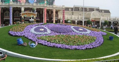 A floral arrangement depicting Stitch as part of a celebration at Tokyo Disneyland. Source: Wikipedia Commons.