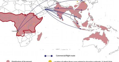 Map showing the distribution of Aedes aegypti across Africa and the Asia-Pacific region (areas shaded pink). The red outline delineates yellow fever-endemic regions. Yellow dots represent the location of yellow fever cases related to the Angolan outbreak (source: HealthMap). Commercial flight routes with direct connections between Luanda and Beijing and indirect connections from Luanda to South and Southeast Asia via Dubai (source: FLIRT) are also represented.
