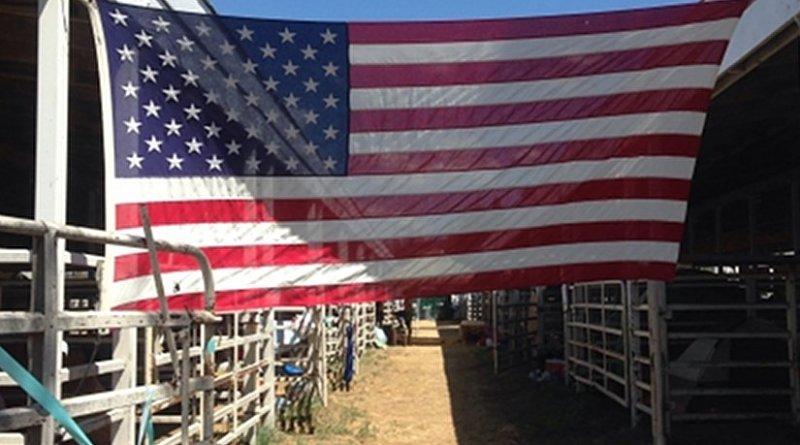 America United States Flag