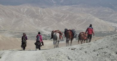 Prehistoric Himalayan settlements are remote and only accessible today by horse and on foot. Credit University of Oklahoma