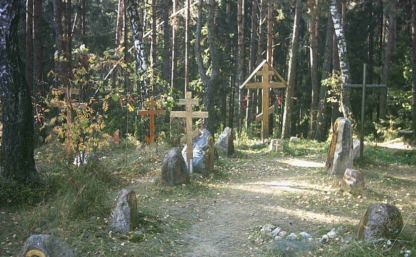 Kurapaty forest graves in Belarus. Photo by Tobster, Wikipedia Commons.