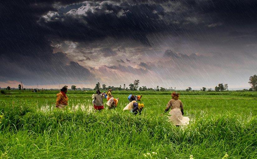 Monsoon rains fall on the green valleys of Madhya Pradesh, India. Credit Rajarshi Mitra