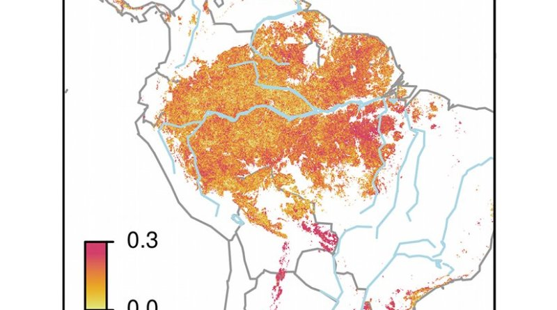 The Amazon area with high (light colours), and low dynamics (dark), meaning low recovery rates after perturbations. The dark purple colours (0.3) reflect areas in fragile state.