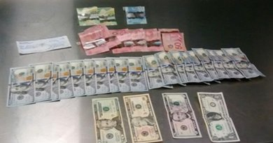 Part of the record interception of USD 450 million made by customs officers in Toluca, Mexico. Photo Credit: INTERPOL