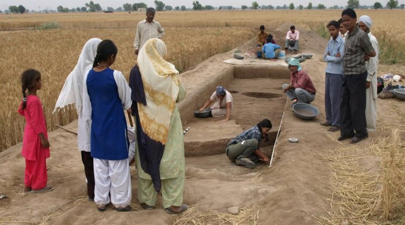 The Land, Water, Settlement project excavations in northwest India. Credit Cameron Petrie