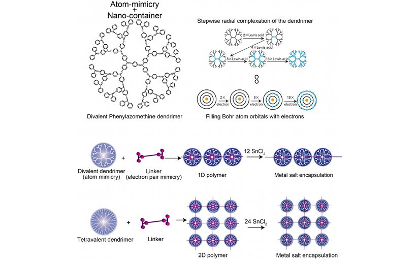 This image shows the structure of Divalent Phenylazomenthine dendrimer, Comparison of the DPA and Bohr atom model, and 1D/2D supramolecular polymer. Credit Tokyo Institute of Technology