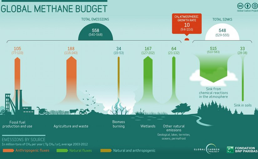 Methane emissions by source are illustrated. Credit Global Carbon Project of Future Earth