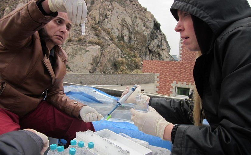 UCI Professor Katherine Mackey (right) and Adina Paytan, a research professor at UC Santa Cruz's Institute of Marine Sciences, catalog samples taken from the East China Sea. Their team analyzed the water to gauge the impact of human-caused pollution on fragile aquatic ecosystems. Credit Courtesy of Katherine Mackey / UCI