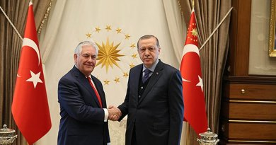 Tillerson Says US And Turkey Committed To Defeating Islamic State