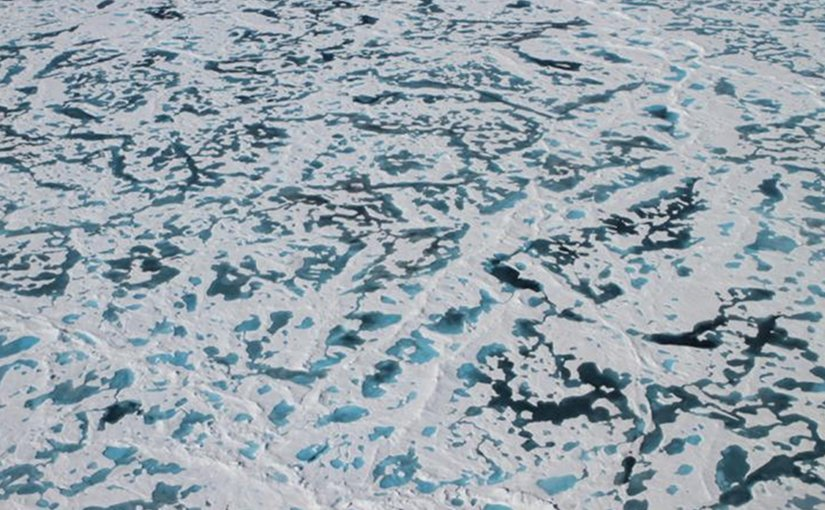 These are melt ponds on the surface of Arctic ice. Credit NASA