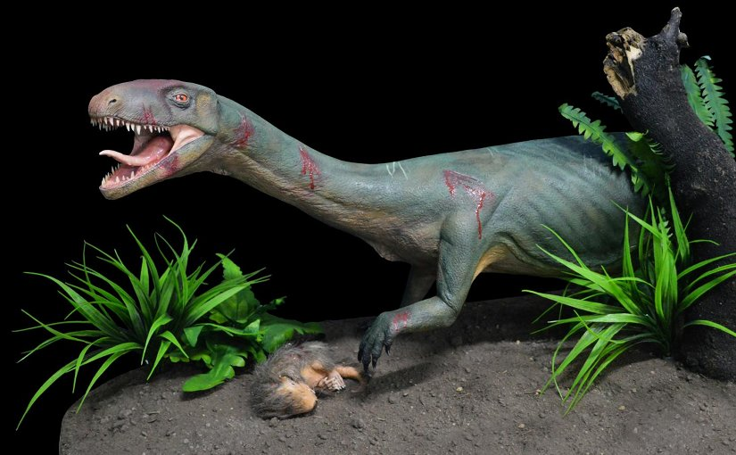 Life model of the new species Teleocrater rhadinus, a close relative of dinosaurs, preying upona juvenile cynodont, a distant relative of mammals. Credit Museo Argentino de Ciencias Naturales