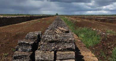 Traditional peat mining destroys moorlands. Photo: Ralf Resk