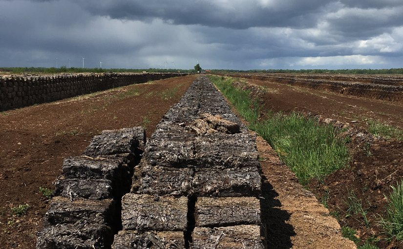 Traditional peat mining destroys moorlands. Photo: Ralf Resk