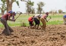 Reduced US Air Pollution To Boost Rainfall In Africa's Sahel