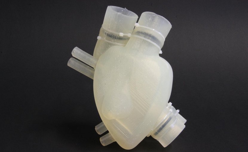 The soft artificial heart resembles the human heart in appearance and function. Credit Zurich Heart