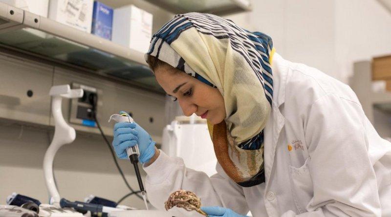 PhD student Dina Hajjar has been examining anticancer properties of plants used in traditional medicine in Saudi Arabia. Credit © KAUST 2017