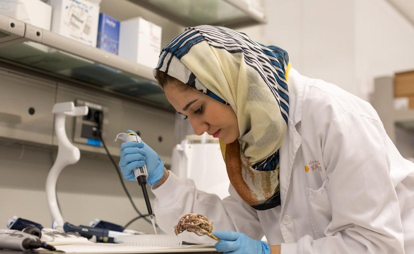 PhD student Dina Hajjar has been examining anticancer properties of plants used in traditional medicine in Saudi Arabia. Credit © KAUST 2017