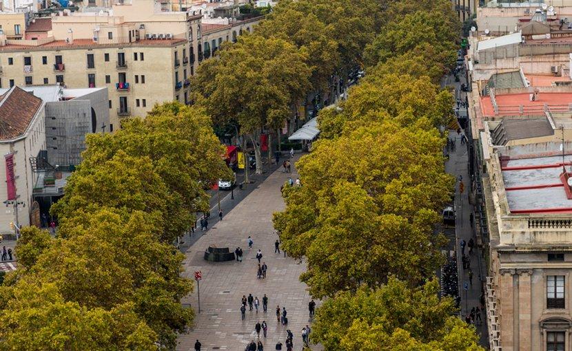 File photo of Las Ramblas, Barcelona. Photo by Ralf Roletschek, Wikimedia Commons.