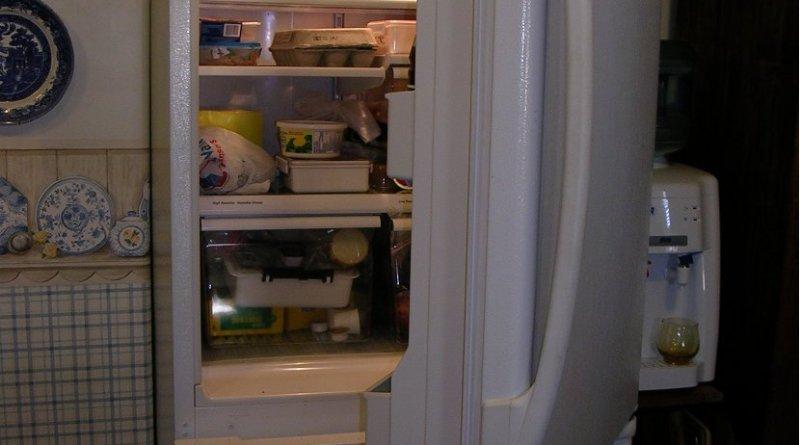 food fridge refrigerator