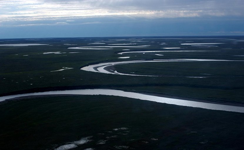 Fish Creek wanders through the National Petroleum Reserve-Alaska, a 22.8 million acre region managed by the Bureau of Land Management on Alaska's North Slope. USGS has periodically assessed oil and gas resource potential there. These assessments can be found here: https://energy.usgs.gov/RegionalStudies/Alaska/NPRA.aspx (Credit: David Houseknecht, USGS. Public domain.) Credit David Houseknecht, USGS