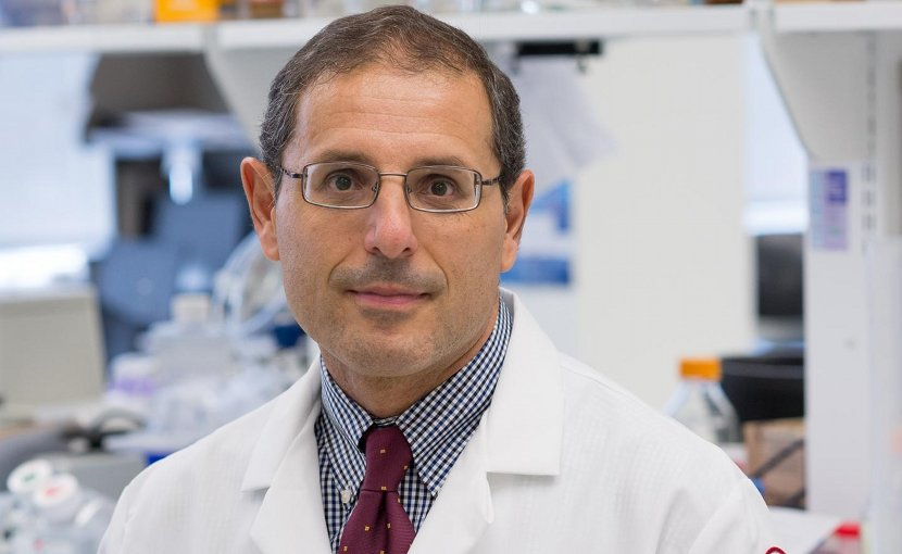 Domenico Praticò, MD, Professor in the Departments of Pharmacology and Microbiology and Director of the Alzheimer's Center at the Lewis Katz School of Medicine at Temple University, as well as senior investigator on the study. Credit Lewis Katz School of Medicine at Temple University