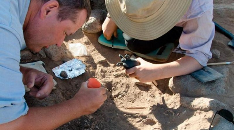 Archaeologists working at the Shubayqa 1 site. Credit University of Copenhagen