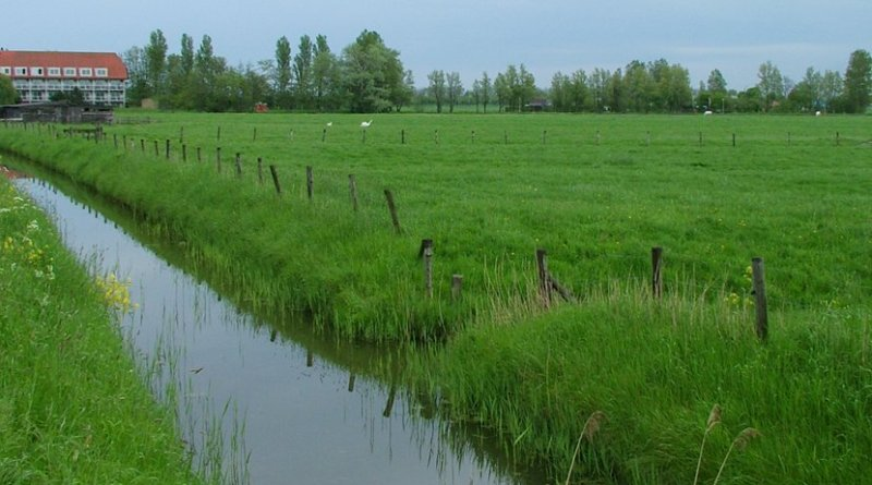 farm stream agriculture