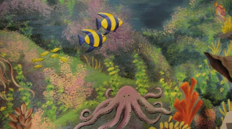 fish octopus