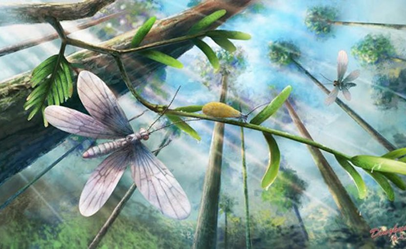 Ecological restoration of moths in the Cretaceous Burmese amber forest. Credit YANG Dinghua