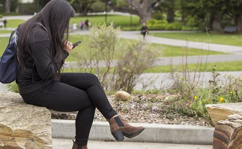 A study of 135 SF State University students found that the heaviest smartphone users were the most depressed, anxious and lonely. Credit San Francisco State University