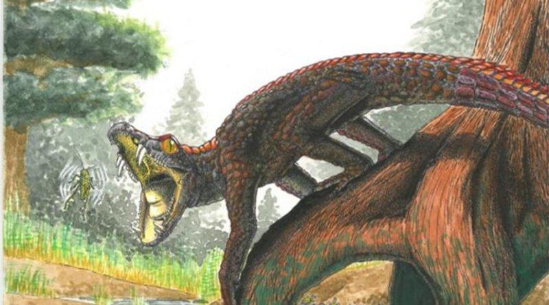 This is a reconstruction of Shartegosuchus. Credit Artist: Viktor Rademacher