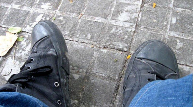 shoe shoes