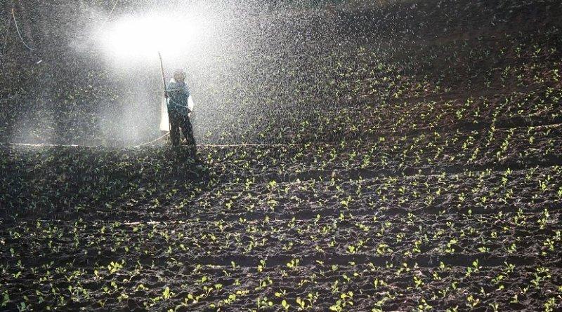 field worker fertilizer farm