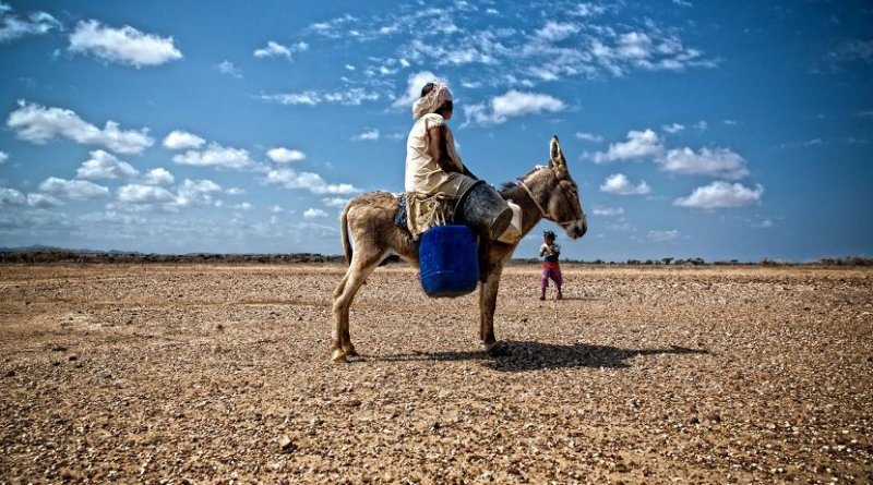 La Guajira, a department located in northeastern Colombia, on the border with Venezuela, suffered a severe drought in 2014. Credit David Taggart