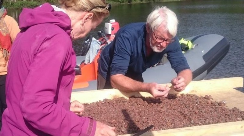 Satu Koivisto and Jørgen Dencker examining bottom sediments. Credit Photo: Eveliina Salo/Nordic Maritime Group.