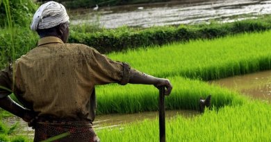 Farmer in Kerala, India.