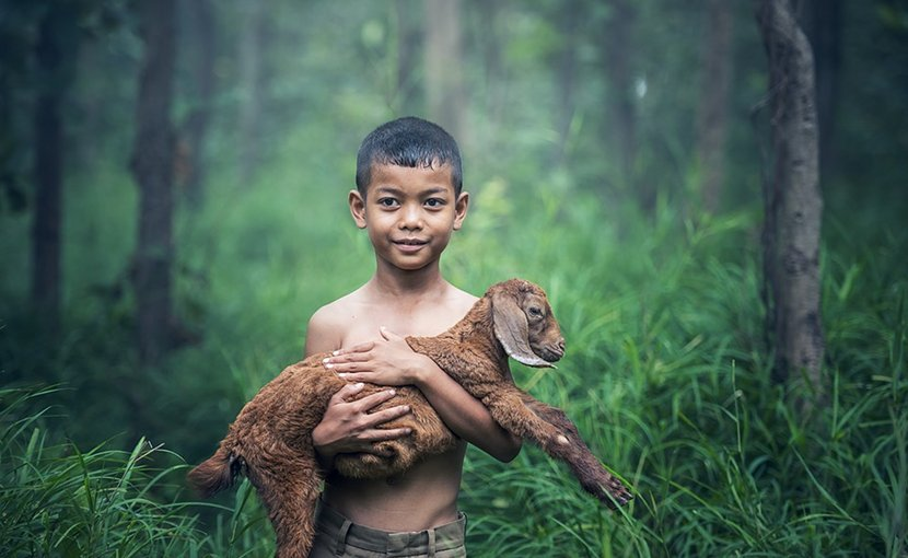 Boy with goat in Thailand.