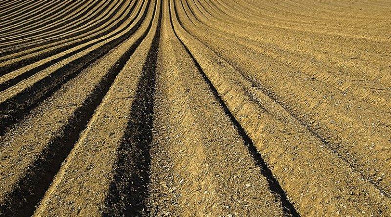 farm soil