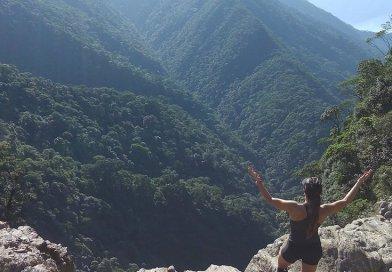 """Serra do Mar """"Atlantic Forest,"""" Brazil"""