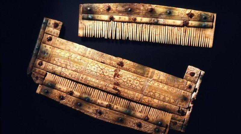 Comb with etui. Credit Landesmuseum Württemberg, P. Frankenstein / H. Zwietasch