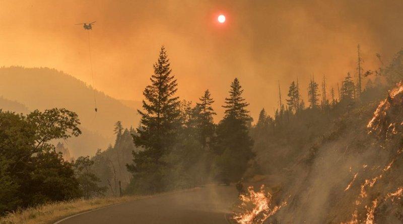 Battling fire during the Taylor Creek and Klondike Fires in the Rogue-Siskiyou National Forest, Oregon, 2018. Credit Kari Greer