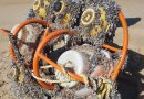 The frame, instruments and sensors as when they when washed up on shore.