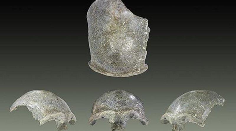 This is a Salkhit skullcap © Maud Dahlem, Muséum de Toulouse (France).