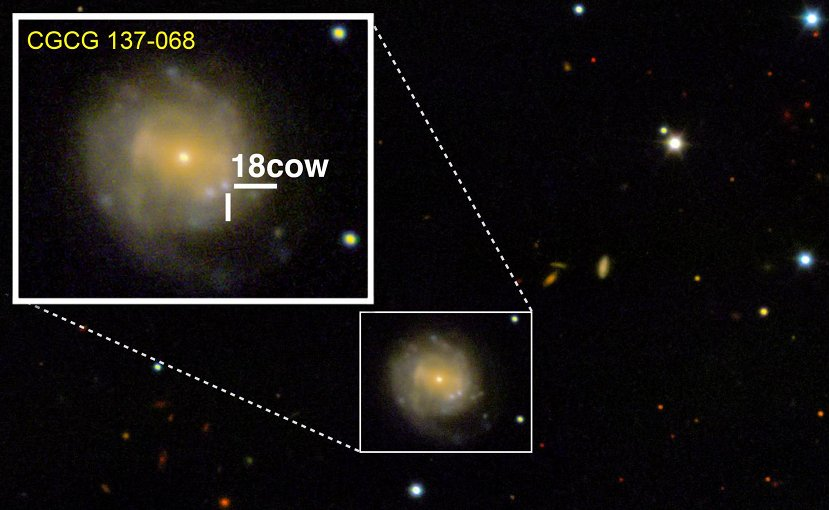 A look at The Cow (approximately 80 days after explosion) from the W.M. Keck Observatory in Maunakea, Hawaii. The Cow is nestled in the CGCG 137-068 galaxy, 200 million light years from Earth. Credit Raffaella Margutti/Northwestern University