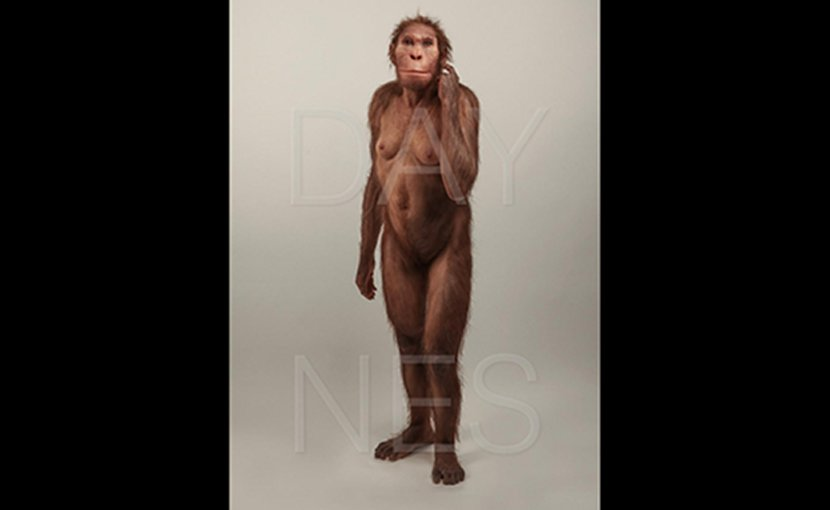 Life reconstruction of Australopithecus sediba commissioned by the University of Michigan Museum of Natural History (https://record.umich.edu/articles/museum-acquires-lifelike-reconstruction-human-relative). Credit © Sculpture Elisabeth Daynes (http://www.daynes.com/) / Photo S. Entressangle.