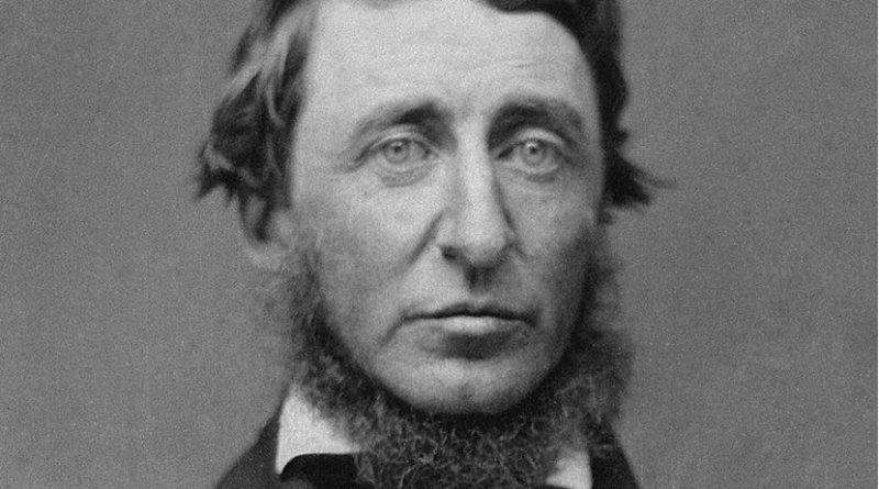 Henry David Thoreau. Photo Credit: B. D. Maxham, Wikimedia Commons.