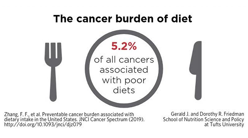 A new study estimates that 5.2 percent of new invasive cancer cases reported in 2015 are associated with poor diets. Credit Nako Kobayashi/Tufts University